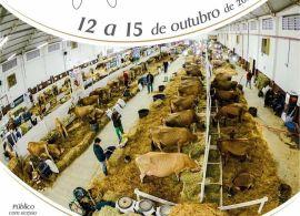 Expojersey 2021 - Alteração da data de entrada dos animais alterada para dia 13/12/2021