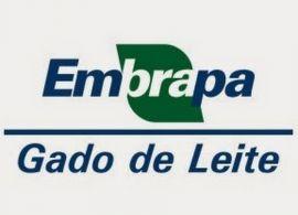 """Embrapa lança o livro """"Na era do consumidor – uma visão do mercado lácteo brasileiro"""""""